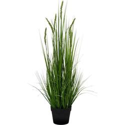 Kunstpflanze Penisetum, Creativ green, Höhe 90 cm 90 cm
