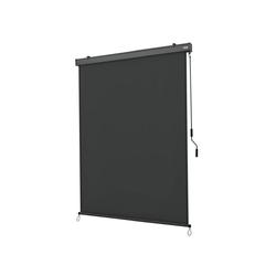 Strattore Balkonsichtschutz Ausziehbare Senkrechtmarkise / Vertikalmarkise 160 x 250 cm - Anthrazit