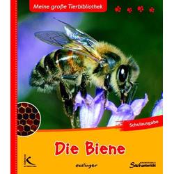 Die Biene als Buch von Paul Starosta