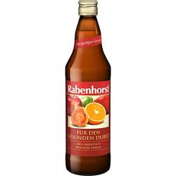 RABENHORST für den gesunden Durst Saft 700 ml