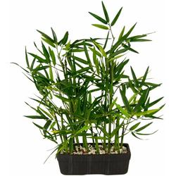 Kunstpflanze Bambus Bambus, Höhe 41 cm