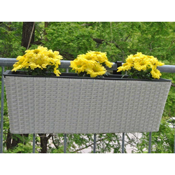 Blumenkasten Polyrattan 60x19x20cm perlmutt weiß
