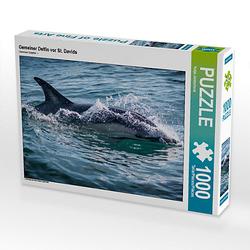 Gemeiner Delfin vor St. Davids Lege-Größe 64 x 48 cm Foto-Puzzle Bild von Katja Jentschura Puzzle