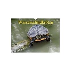 Wasserschildkröten (Wandkalender 2021 DIN A3 quer)