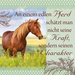 """H&H Romantisches Geschirrtuch """"An einem edlen Pferd..."""" Handtuch"""