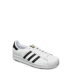 Adidas Golf Superstar Niedrige Sneaker Weiß ADIDAS GOLF Weiß 43 1/3,42 2/3,42,44 2/3,46,44,40 2/3,47 1/3,41 1/3,45 1/3