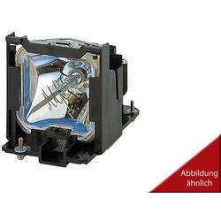 ZU0643022060 Beamer Ersatzlampe Passend für Marke (Beamer): Liesegang