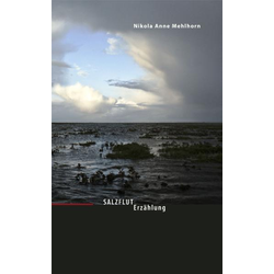 Salzflut als Buch von Nikola Anne Mehlhorn