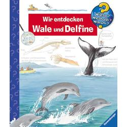 WWW41 Wir entdecken Wale und