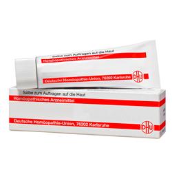 HARPAGOPHYTUM SALBE N 50 g