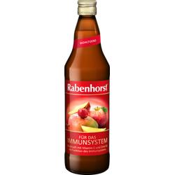 RABENHORST für das Immunsystem Saft 700 ml
