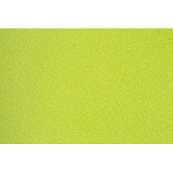 ANDIAMO Teppichboden Sina, Breite 400 cm, Meterware grün