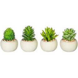 Künstliche Zimmerpflanze Maddison Sukkulente, Leonique, Höhe 8,5 cm, 4er Set