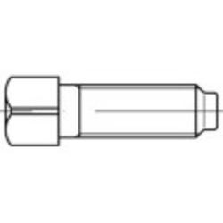TOOLCRAFT 107966 Vierkantschrauben M12 80mm Vierkant DIN 479 Stahl 25St.