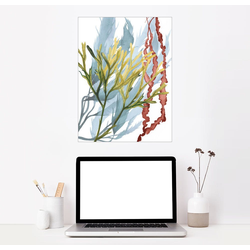 Posterlounge Wandbild, Seepflanzen II 60 cm x 80 cm