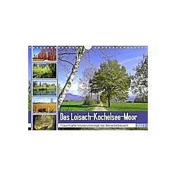 Das Loisach-Kochelsee-Moor Traumhafte Moosrundwege bei Benediktbeuern (Wandkalender 2021 DIN A4 quer)