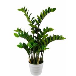 Kunstpflanze Tropenwurz Tropenwurz, Höhe 90 cm