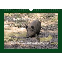 Schweinkram - Die Wildschweine sind los (Wandkalender 2021 DIN A4 quer)