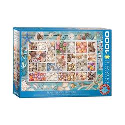 empireposter Puzzle Maritime Muschelsammlung - 1000 Teile Puzzle - Format 68x48 cm, 1000 Puzzleteile