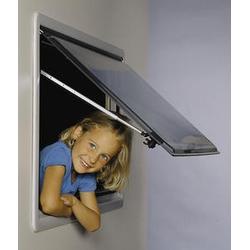 Ersatzscheiben für S3 - Fenster Grauglas 700 x 600 mm