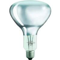 Philips 12659725 Infrarotlampe