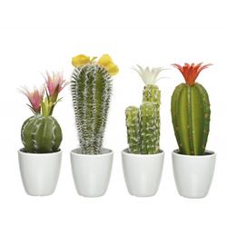 Kaktus im Topf (DH 8x24 cm)