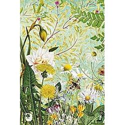 Meine Notizen Frühlingsblumen - Buch