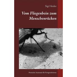 Vom Fliegenbein zum Menschenrücken als Buch von Sigi Heider