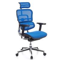 HJH Office Ergohuman Netz blau