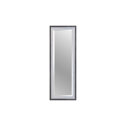 Spiegelprofi Rahmenspiegel Alexa in schwarz/silber, 50 x 150 cm