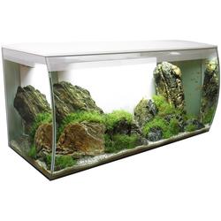 FLUVAL Aquarium FLEX 123, BxTxH: 82x40x40 cm, 123 Liter