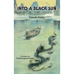 Into A Black Sun als Buch von Takeshi Kaiko