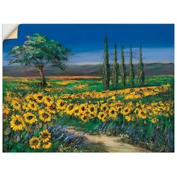 Artland Wandbild Sonnenblumenfeld, Blumen (1 Stück) 120 cm x 90 cm
