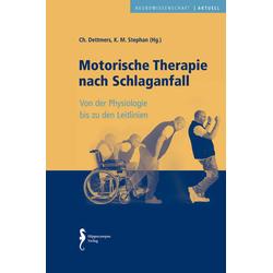 Motorische Therapie nach Schlaganfall: Buch von Christian Dettmers/ Klaus Martin Stephan