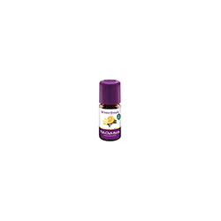 WINTERFREUDE Öl 5 ml