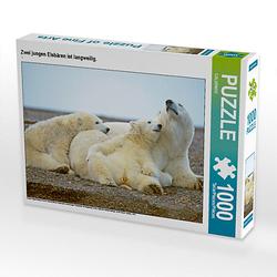 Zwei jungen Eisbären ist langweilig. Lege-Größe 64 x 48 cm Foto-Puzzle Puzzle