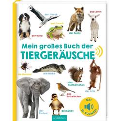 Mein großes Buch der Tiergeräusche: Buch von
