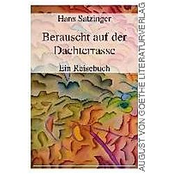 Berauscht auf der Dachterrasse. Hans Satzinger  - Buch
