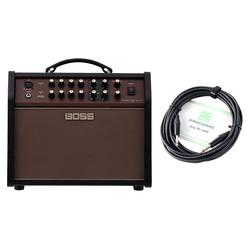 Boss Acoustic Singer Live LT Verstärker Set