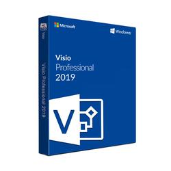 Microsoft Visio 2019 Professional (PC)