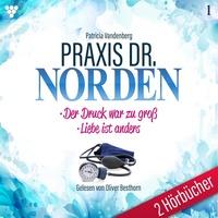 Praxis Dr. Norden 2 Hörbücher Nr. 1 - Arztroman als Hörbuch Download von Patricia Vandenberg