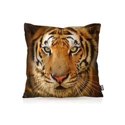 Kissenbezug, VOID, Tigerkopf Outdoor Indoor Tigerfell Tiger katze tier fell 50 cm x 50 cm