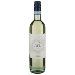 Pinot Grigio - 2019 - Sartori - Italienischer Weißwein
