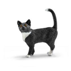 Katze, stehend