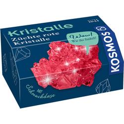Rote Kristalle selbst züchten