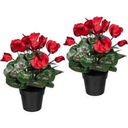 Künstliche Zimmerpflanze Alpenveilchen Alpenveilchen, Creativ green, Höhe 30 cm, 2er Set rot