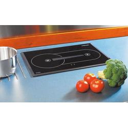 Webasto Diesel Cooker X 100