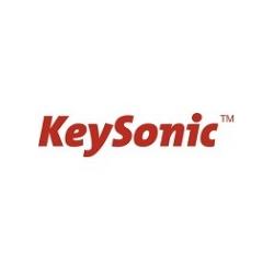 KeySonic Tas DE Industrietastatur schwarz Tastatur (60529)