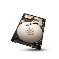 Seagate Laptop Ultrathin HDD 500GB (ST500LT032)