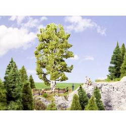 NOCH 0021641 Baum Birke 190mm 1St.